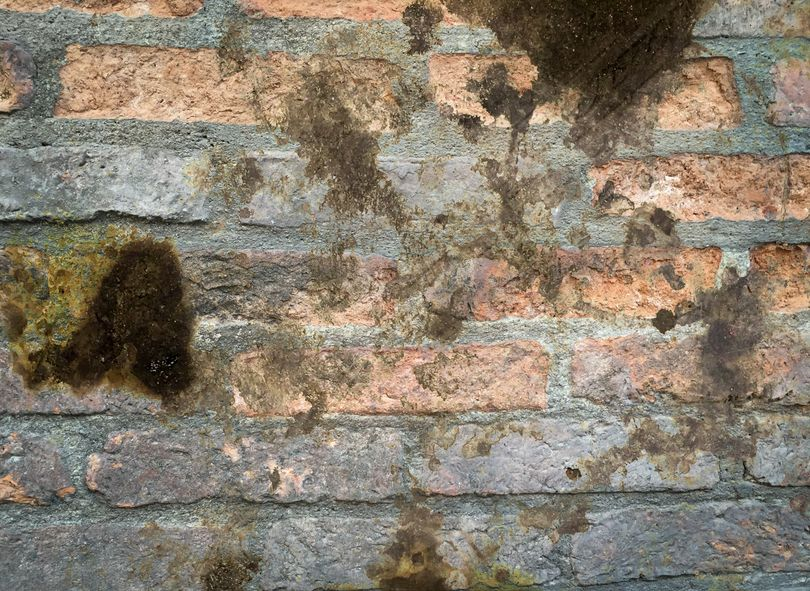 If You've Found a Leak in Your Chimney Don't Wait Until Spring to Fix It